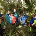 Experiencing Stewart Island wilderness