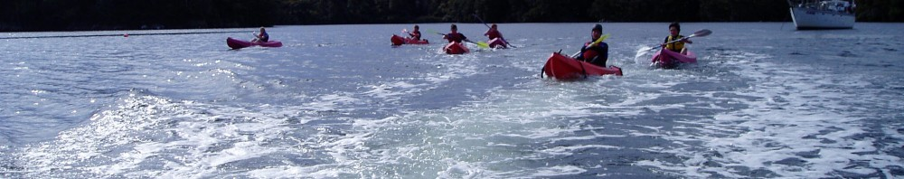 Kaipipi Inlet is a great place to explore in a kayak